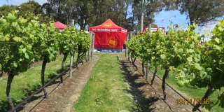 Bushfire Ready Neighbourhoods at Goaty Hill Vineyard